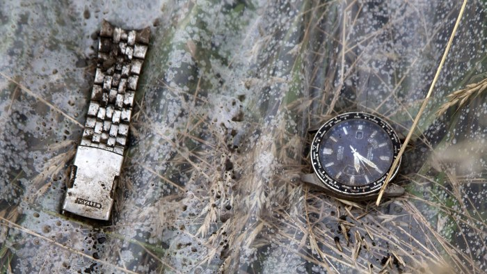 A watch and a part of bracelet lie on a plastic cover at the site of a crashed Malaysia Airlines passenger plane near the village of Rozsypne, Ukraine...