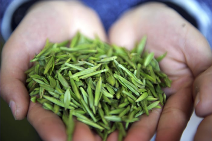 Green tea can cause liver damage in high amounts.