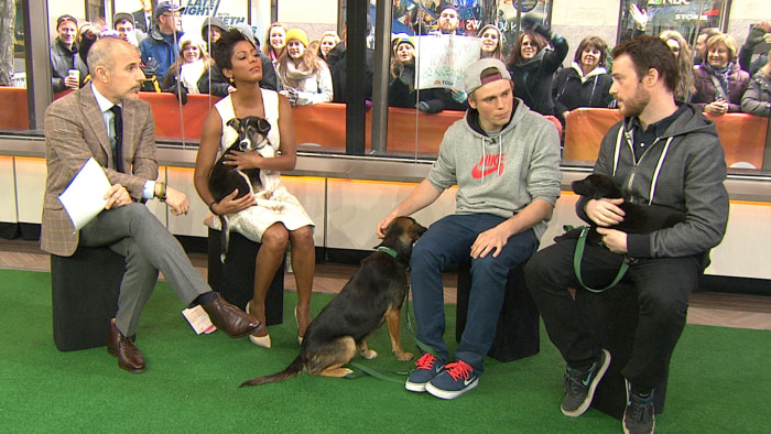 Olympian Gus Kenworthy (in gray) and friend Robin Macdonald spoke with Matt Lauer and Tamron Hall on TODAY Friday while bringing along three new friends - the stray dogs they adopted in Sochi.