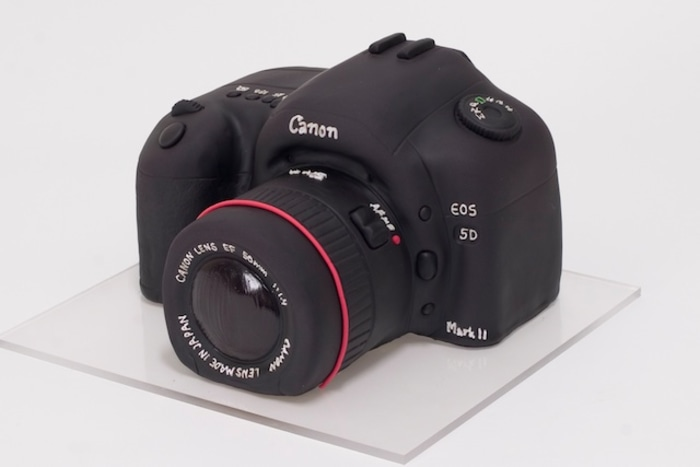 Don't try to point and shoot this camera - it's a cake!