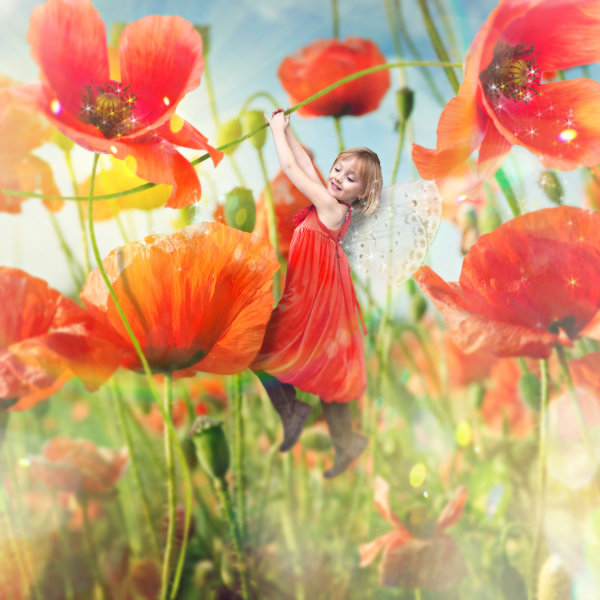 In this image, Van Deale turned one little girl into the fairy princess of poppies.