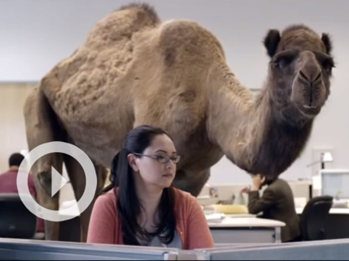 Kids Are Obsessed With the Geico Hump Day Camel