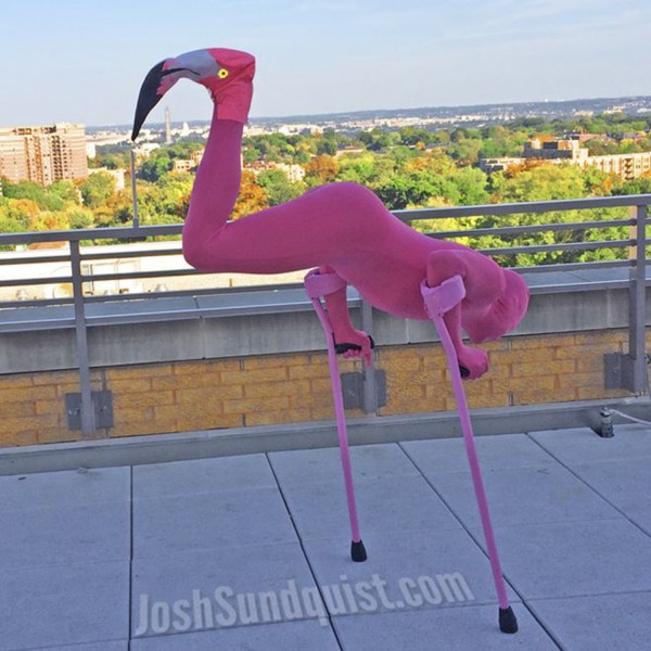 Josh Sundquist.com: A person with one leg balances upsidedown on two pink crutches such that their foot is the head of a flamingo. Their body is in a tight pink body suit.