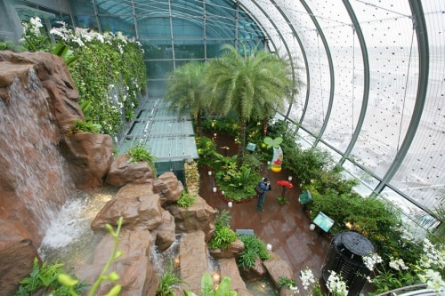 Singapore's Changi Airport boasts the world's first in-airport butterfly garden.