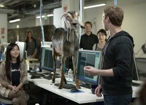 Facebook goat in ad