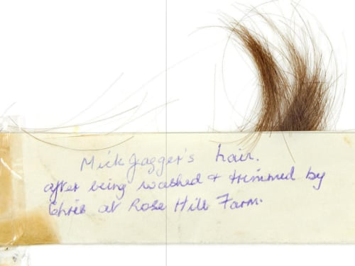 Image: Mick Jagger's hair.