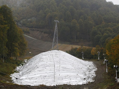 Image: Snow in Sochi