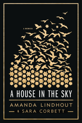 'A House in the Sky'