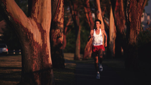 Man Running Through Trees Determination, Horizontal, Full Length, Outdoors, Caucasian Appearance, Jogging, Running, Day, One Person, Off-Track Running...