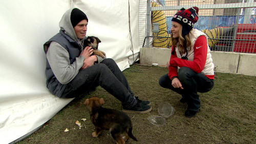 Gus Kenworthy talked to Natalie Morales on TODAY Wednesday about his efforts to rescue stray dogs in Sochi.