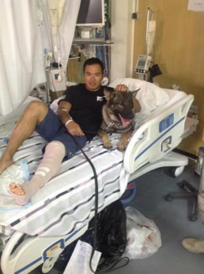 Nico the dog in hospital bed with wounded Sgt. Calvin Aguilar