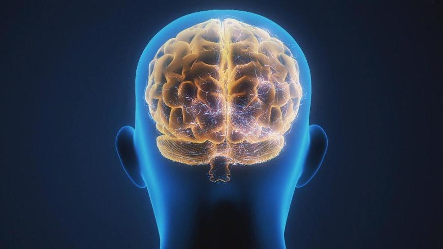 Alzheimers Info - cover