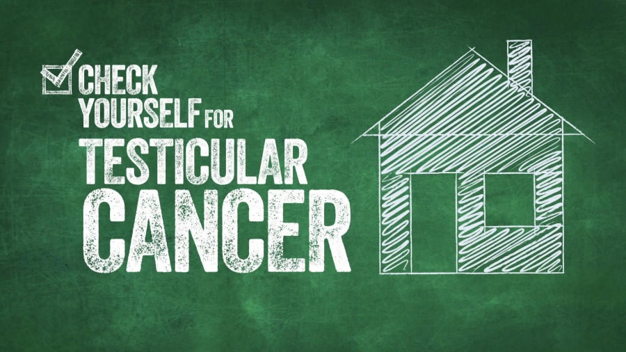 House model testicular cancer