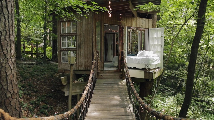 Tree House this airbnb treehouse is the most-wished-for listing - today