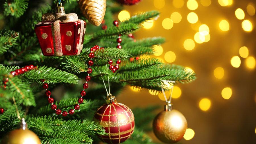 how to keep your christmas tree alive through the holidays todaycom - Desktop Christmas Tree