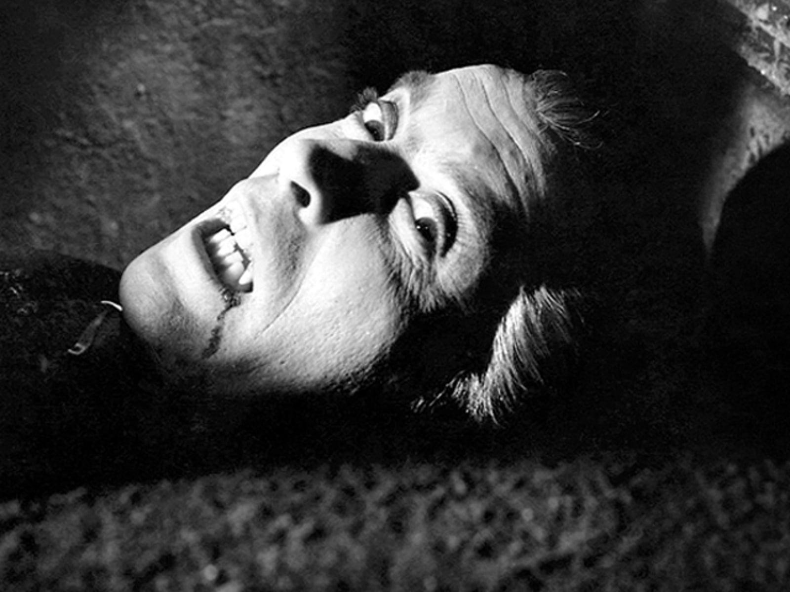 Image: Dracula