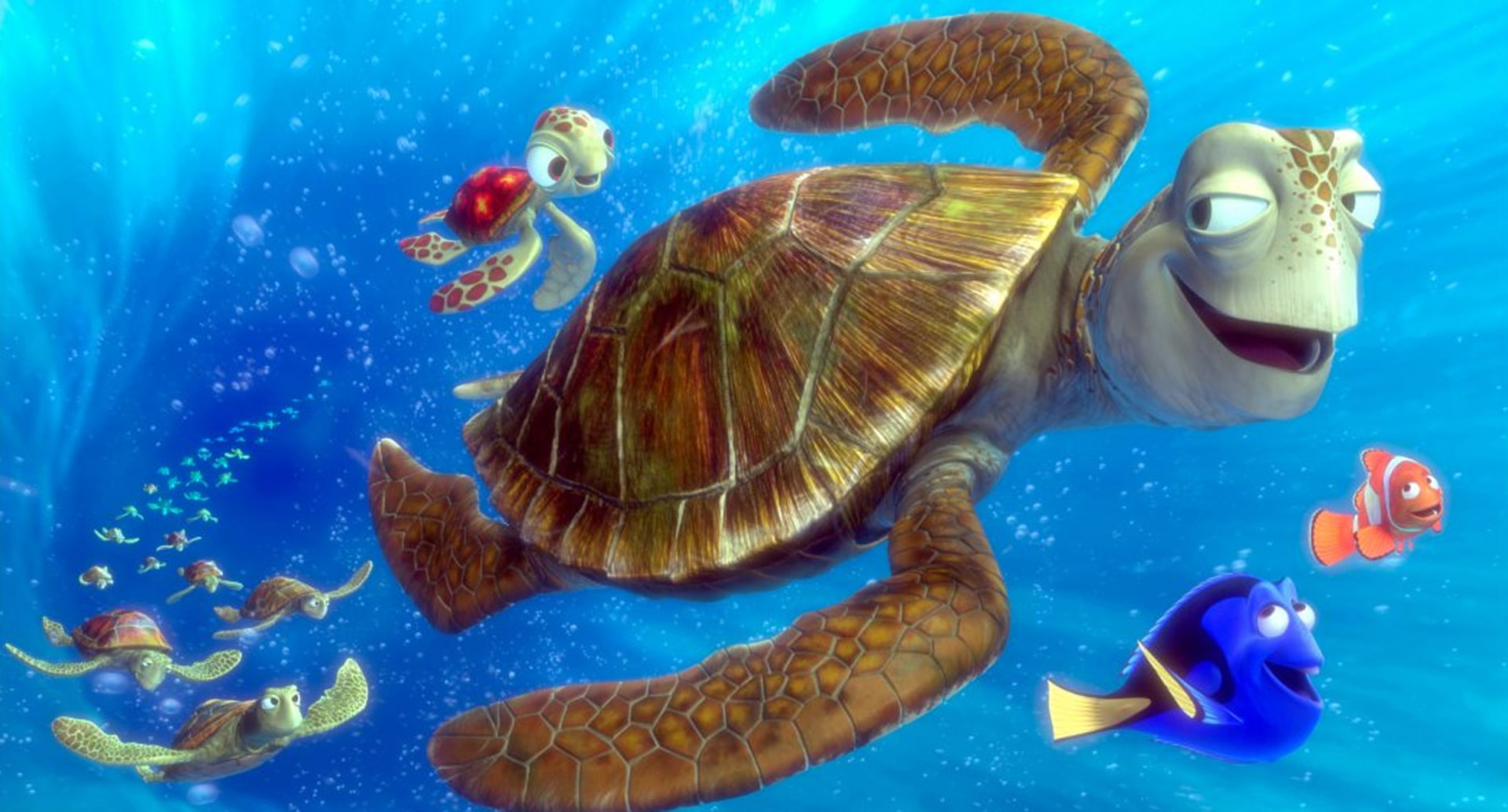 Warning turtles amp tortoises inc - Animated Films Take Flight