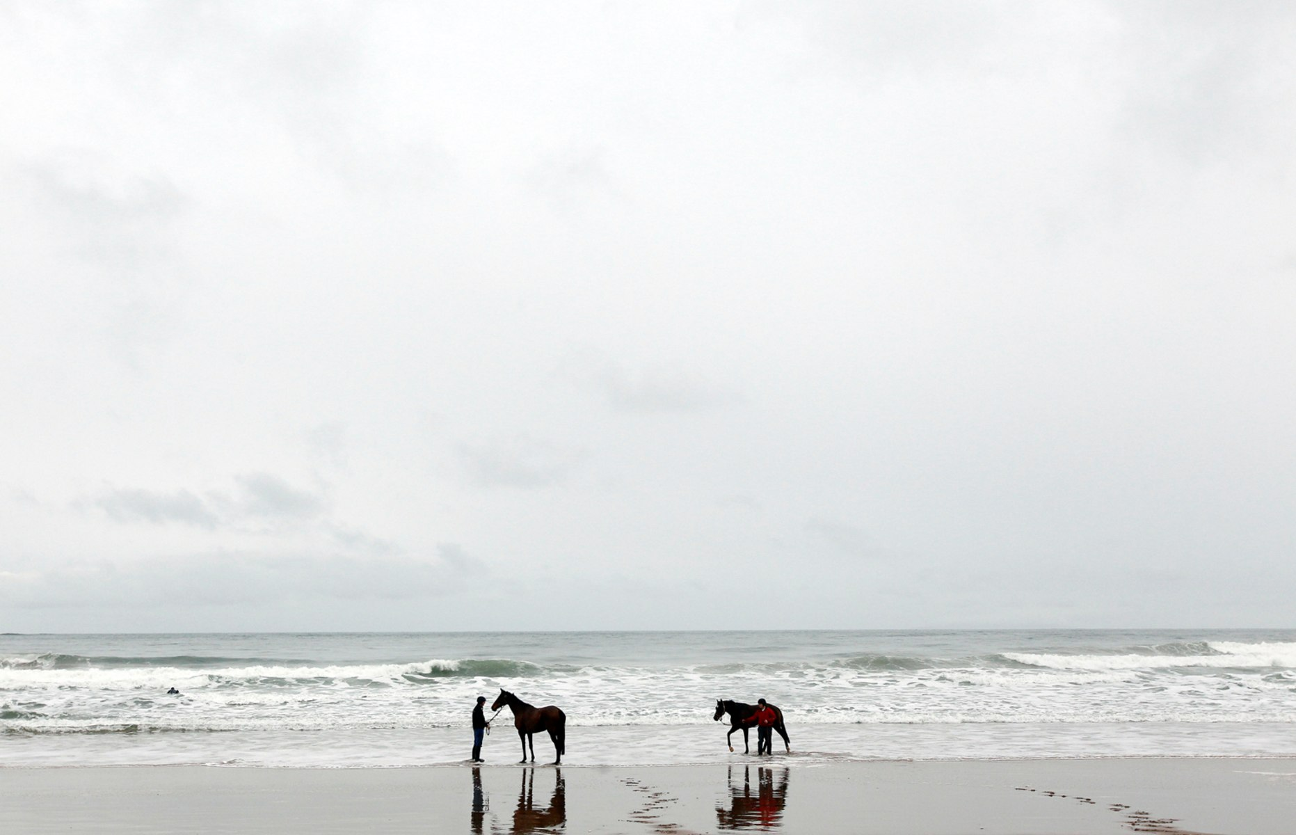 Image: Trainers exercise their thoroughbred point to point horses along the White Rocks beach near the town of Portrush on the North Antrim Coast