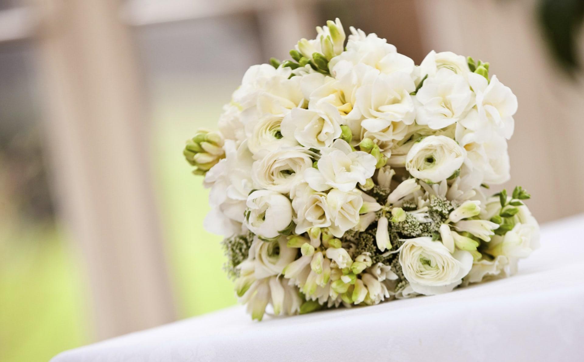 Old Fashioned Twilight Theme Wedding Component - Wedding Dress ...