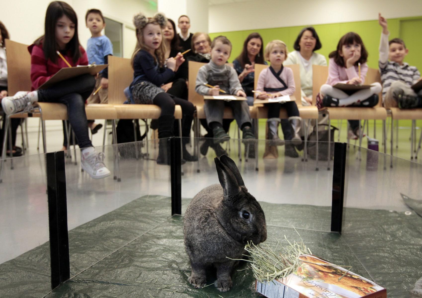 Учитель с учеником занимаются 21 фотография