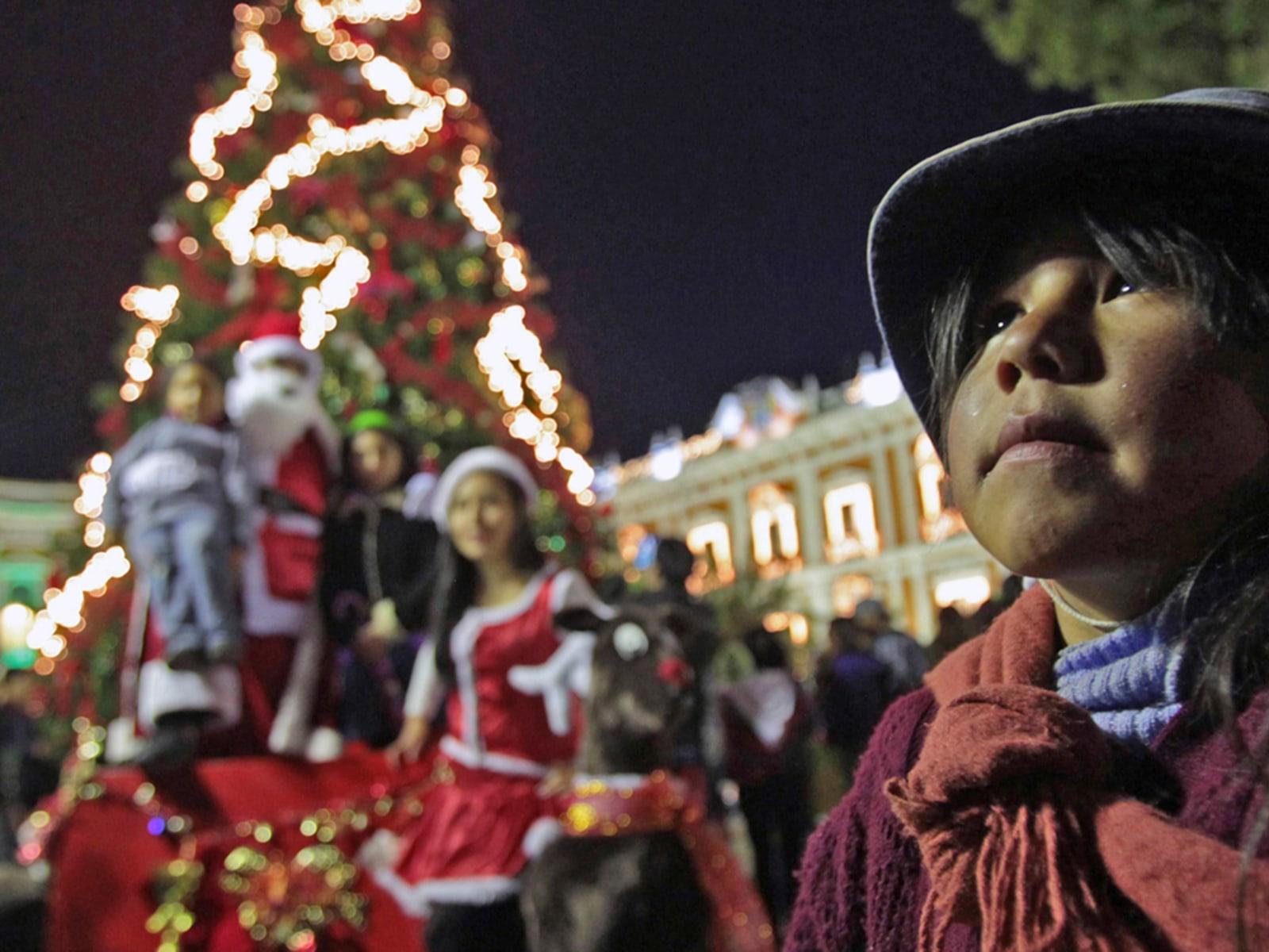 Image: Christmas tree in La Paz