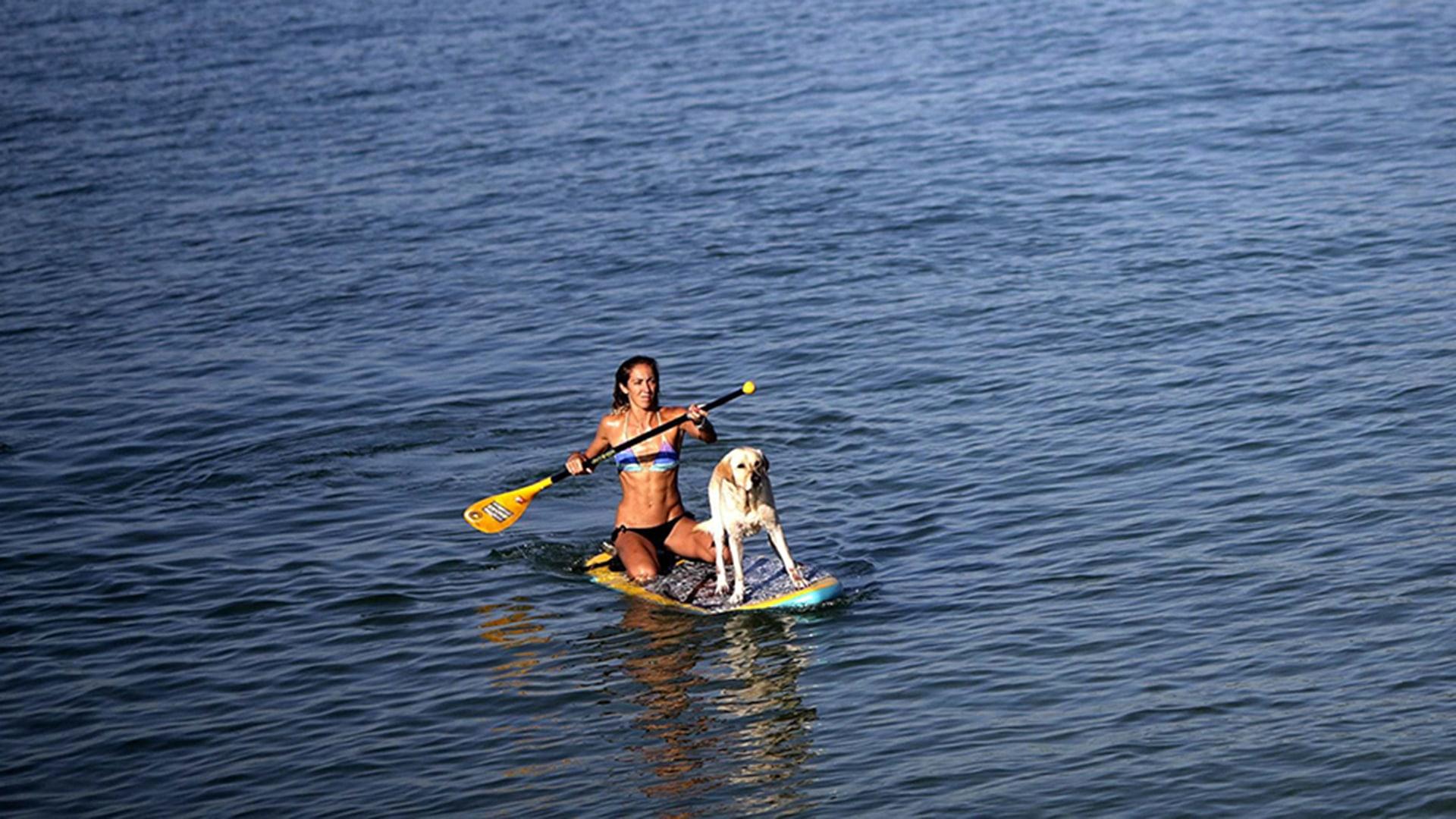 Image: A woman paddles with her  dog at Arpoador beach in Rio de Janeiro
