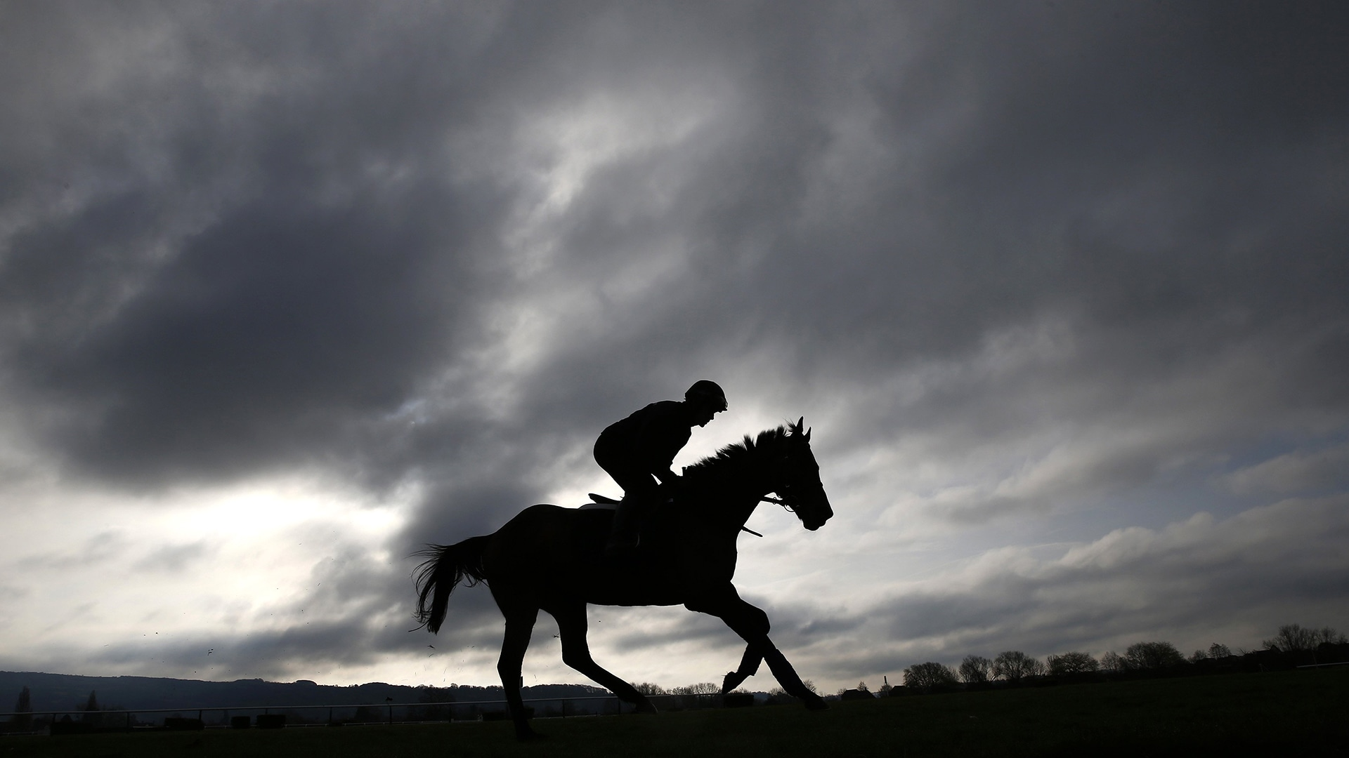 Image: Ruby Walsh on Hurricane Fly takes a workout on the gallops at the Cheltenham racecourse