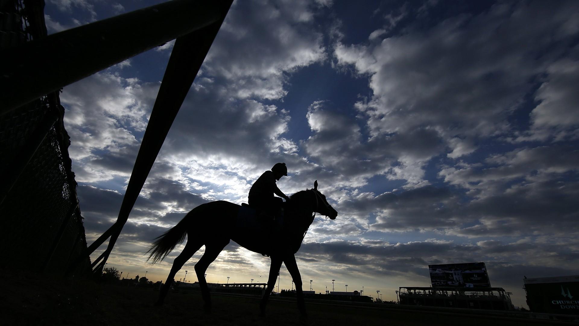 Image: Horse