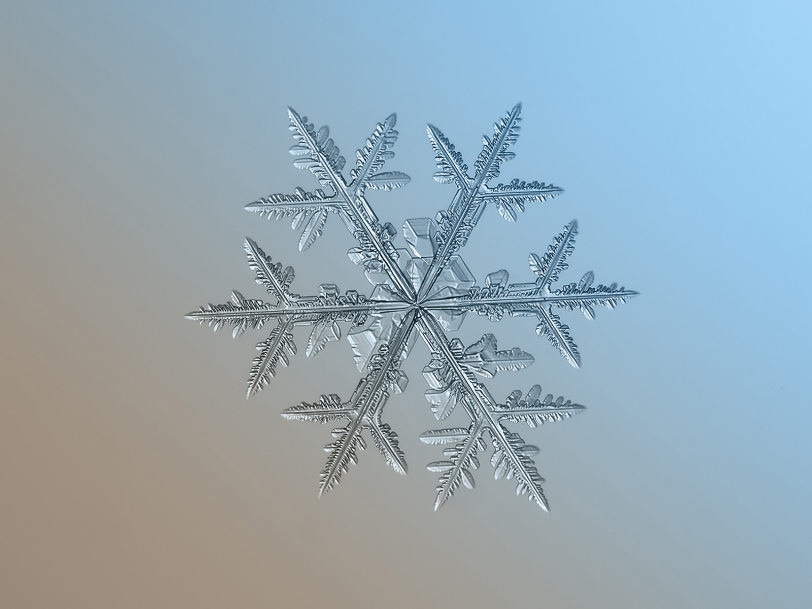 stunning snowflakes today com