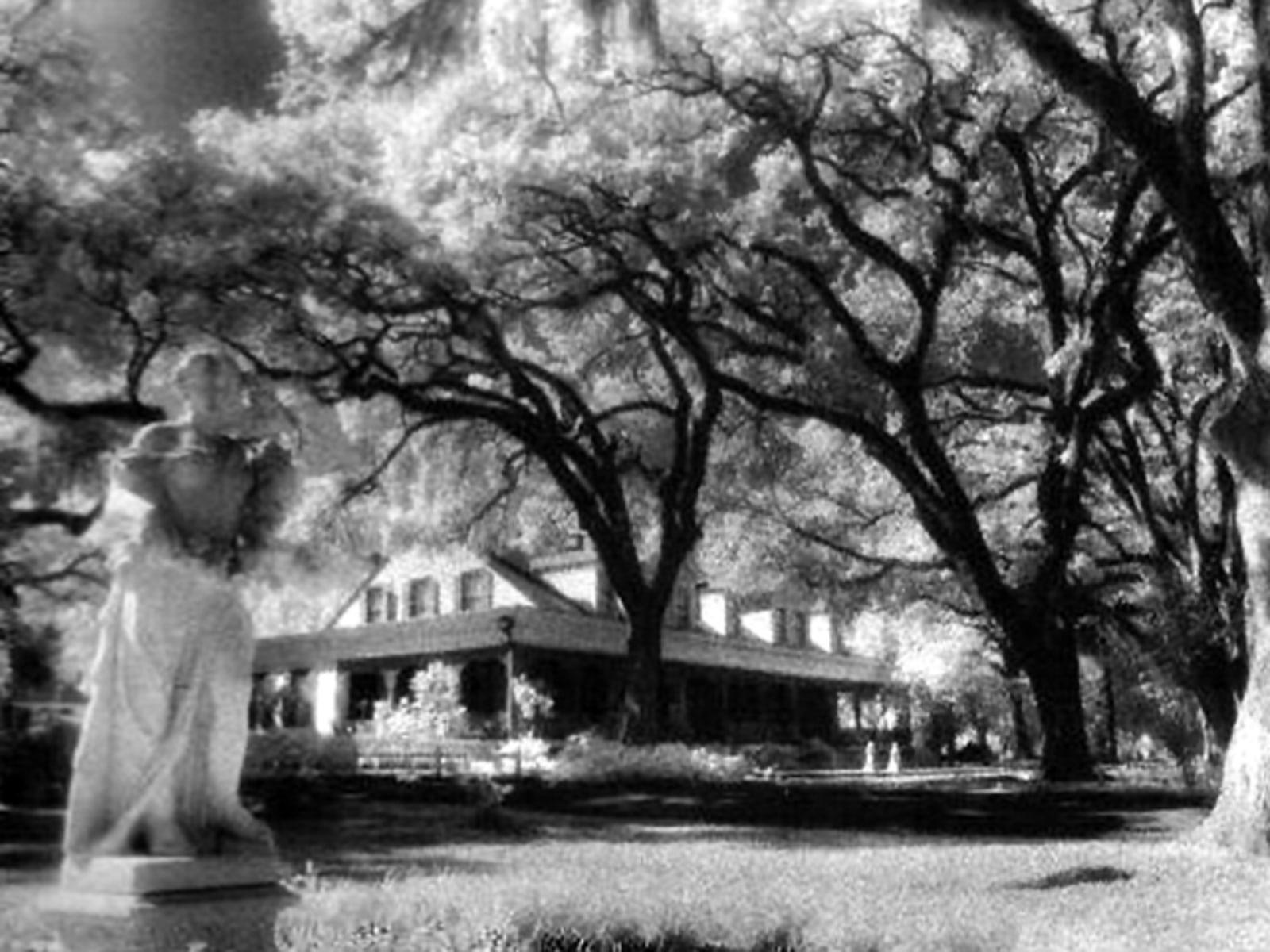 Image: The Myrtles Plantation