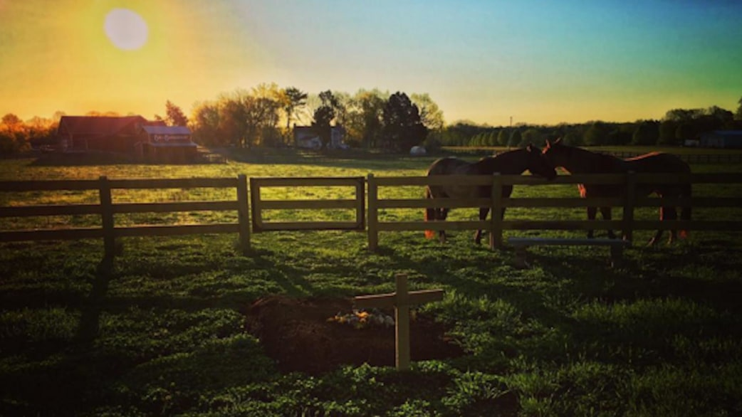 Lyric rory lyrics : Rory Feek shares moving photo of Joey's resting place along with ...
