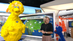 Big Bird, Elmo, and Grover help TODAY's Dylan Dreyer do the weather
