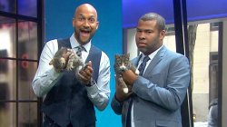 Key & Peele bring cats to TODAY, talk 'Keanu' and Donald Trump's anger