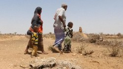 Horn of Africa Suffers from Severe Drought
