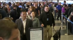 Airlines Say No to Cutting Bag Fees, Insist TSA Needs to Staff Up