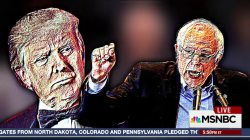 Game On? Trump vs. Sanders