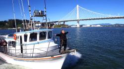 The Six Billion Dollar Bridge: Josh Mankiewicz is on a boat