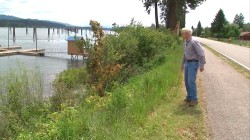 Washington Man Rescues Toddler from River After Car Accident