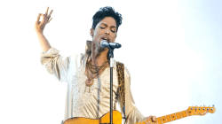 Prince's estate: Judge appoints special administrator