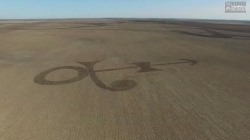 75-Year-Old Farmer Plow's Prince's Symbol Into Corn Field