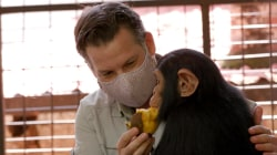 Richard Engel Meets Orphaned Baby Chimps from the Congo