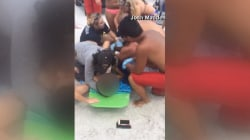 Shark Bites Teen Off Florida Coast