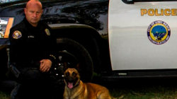 Police mourn K-9 who died after attacking suspect in California