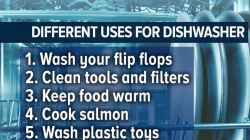 Surprising things you can do with your dishwasher (including cook food!)