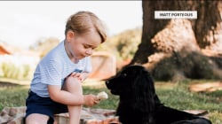 Photo of Prince George offering dog ice cream draws criticism