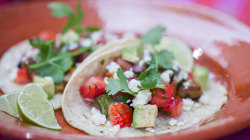 Meatless tacos with tomato strawberry salsa: Siri Daly cooks on the plaza