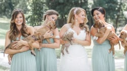 These bridesmaids held puppies, not bouquets