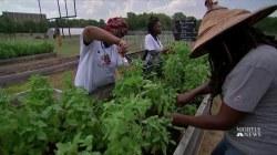 Texas College Turns Its Losing Football Team Into a Winning Farm