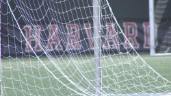 Document Shows 2012 Harvard Men's Soccer Team Rated Female Recruits Sexually