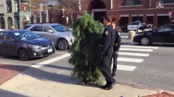 Man Arrested for Blocking Traffic While Dressed as Tree